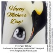Penguin Mothers Day